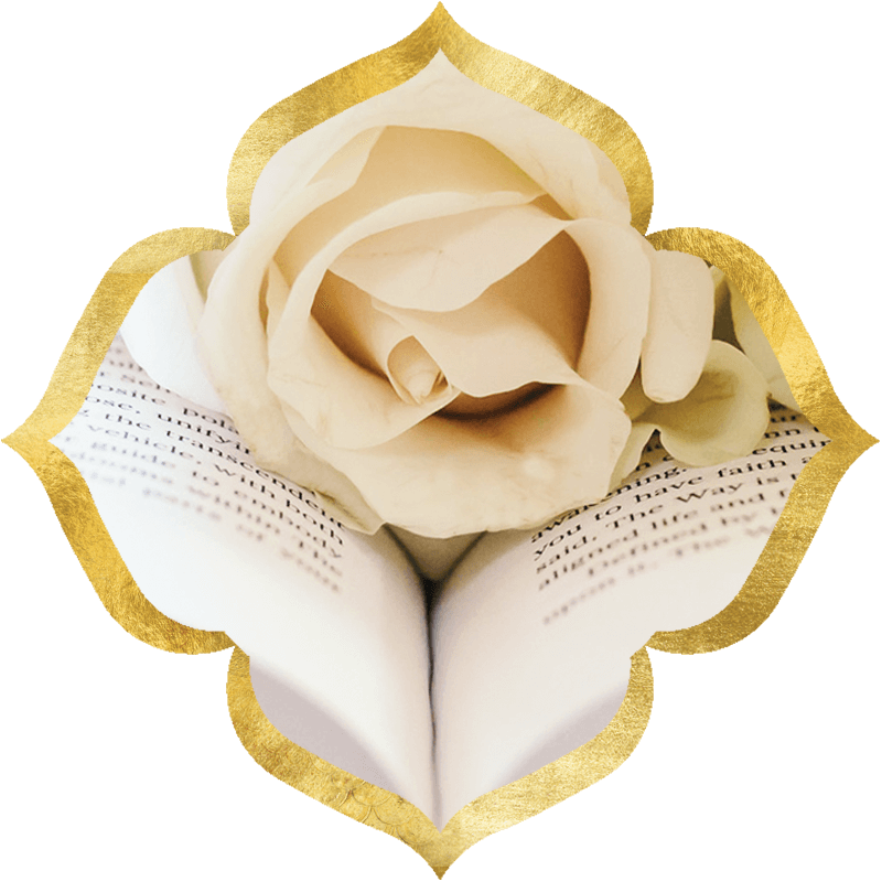 Open book with white rose on it, with ornate gold border