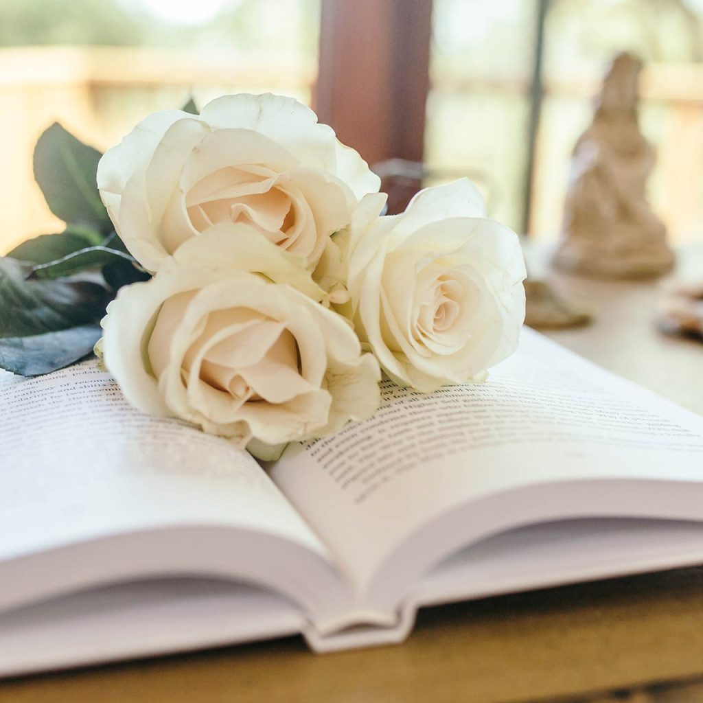 White roses on top of an open book