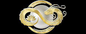 sophia-code-curriculums